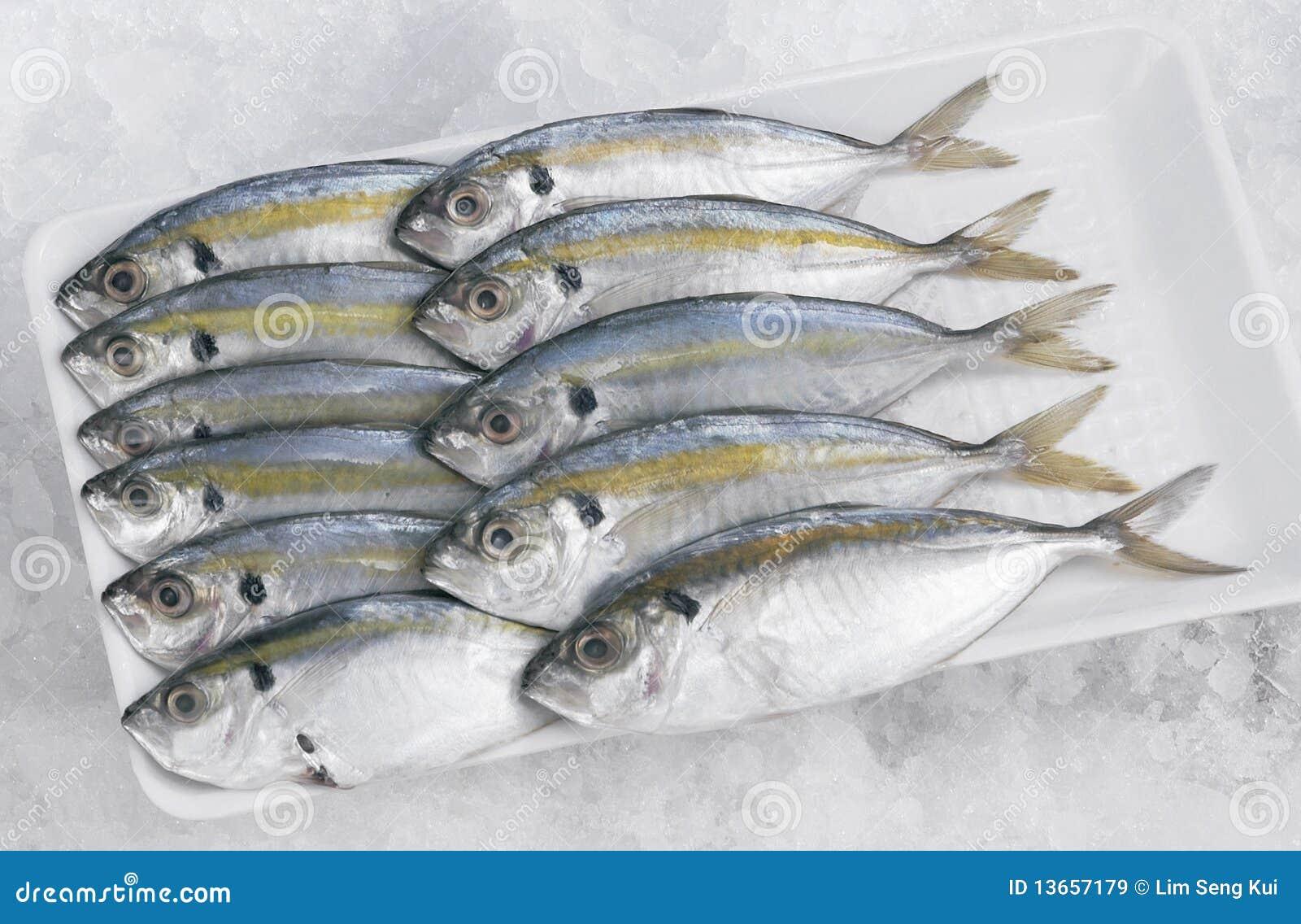 Selar kuning fish stock image image of market eating for Dreaming of eating fish