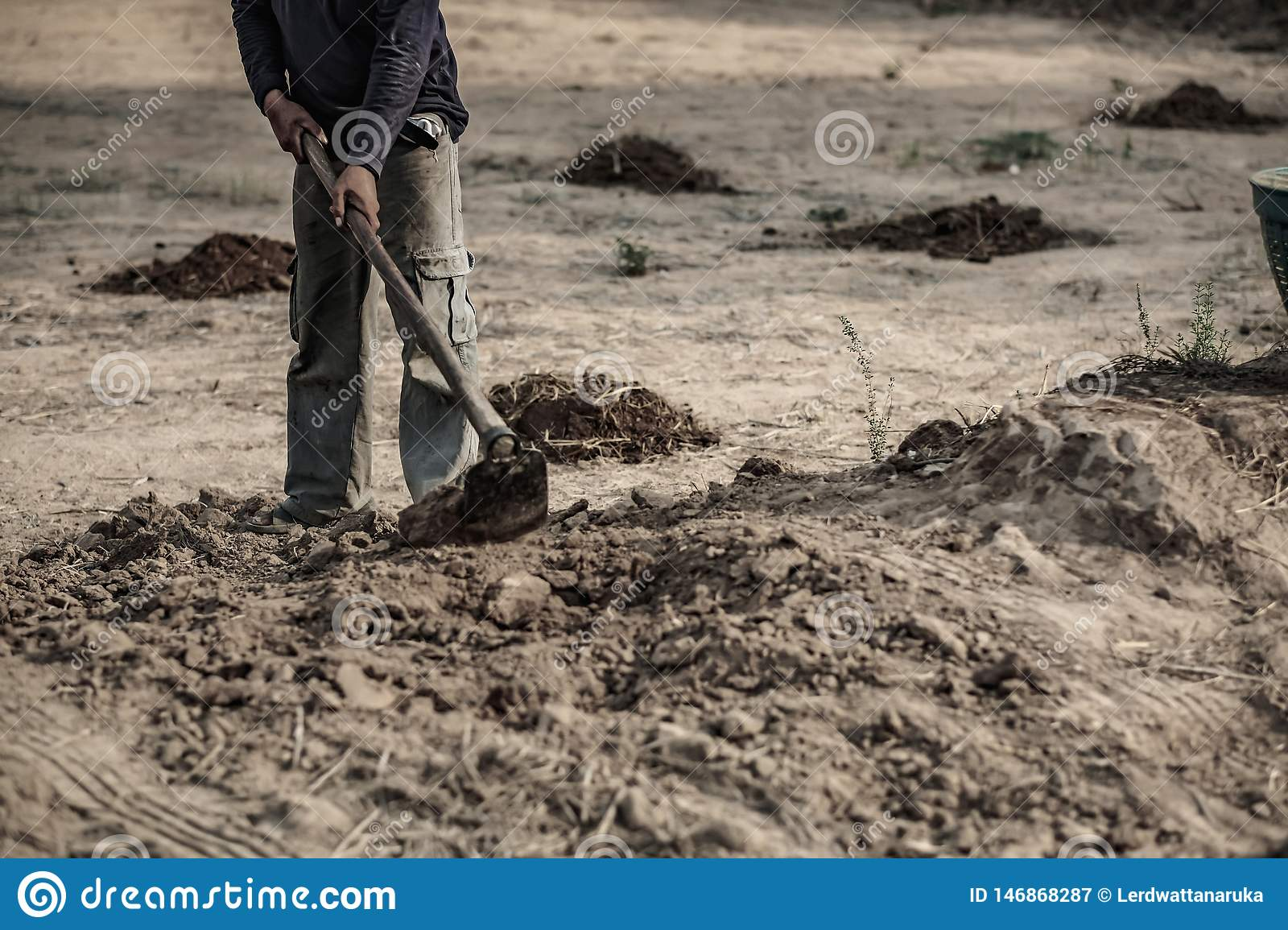 Selective focus , farmer dig soil to working