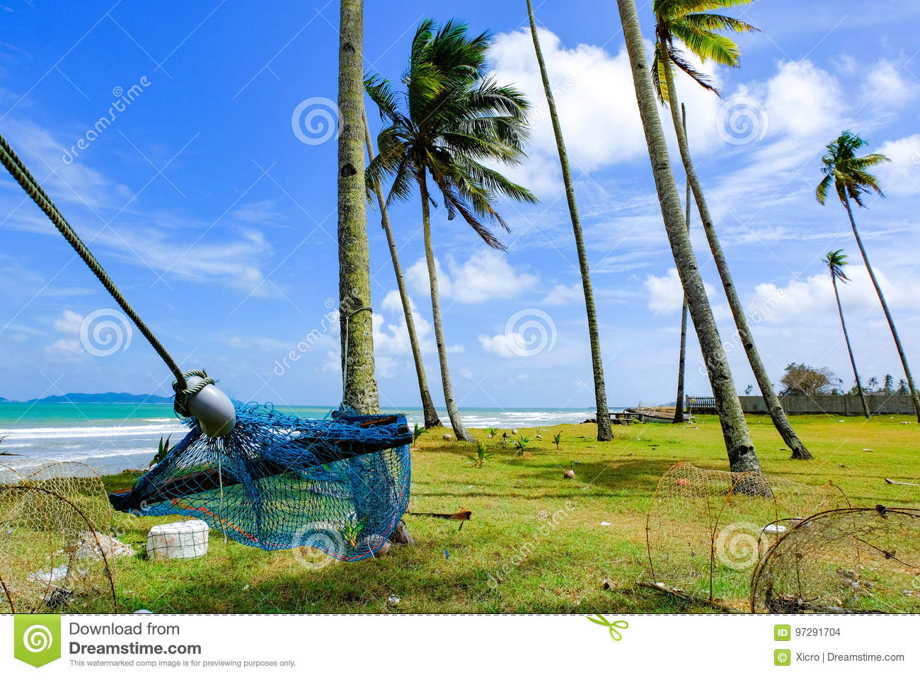 hammock under coconut tree near the beach with blue sky background