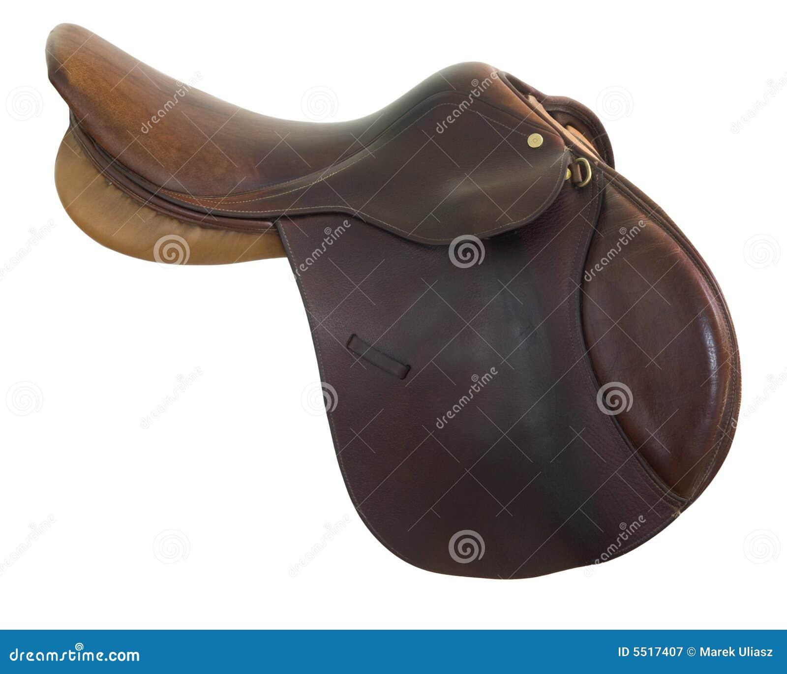Selle anglaise de cheval de type