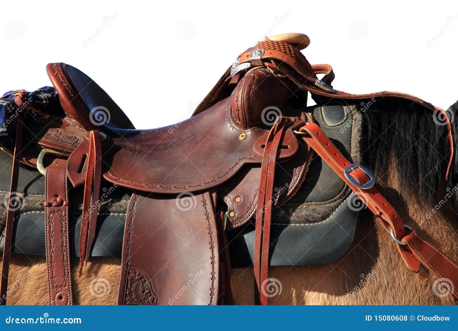 Selle sur le cheval