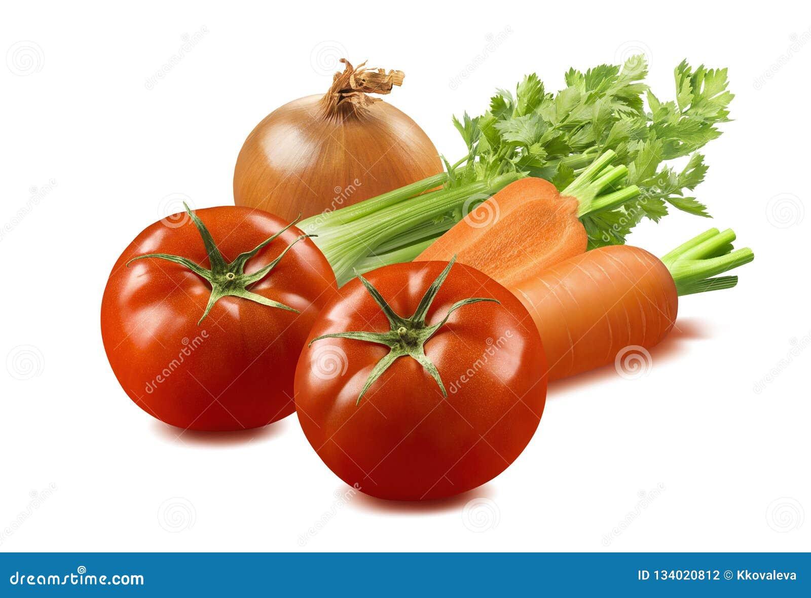 Selleri-, tomat-, lök- och morotgrönsaker som isoleras på vita lodisar