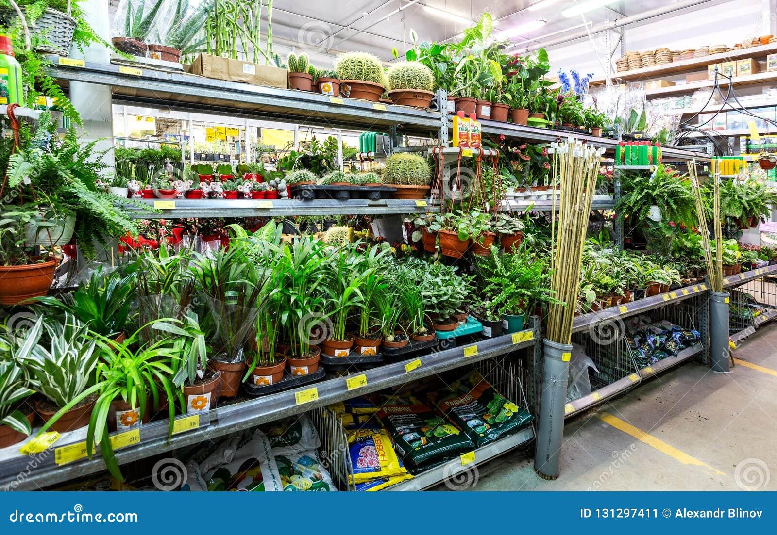 Pot De Graisse Castorama selling potted plants and flowers editorial photo - image of