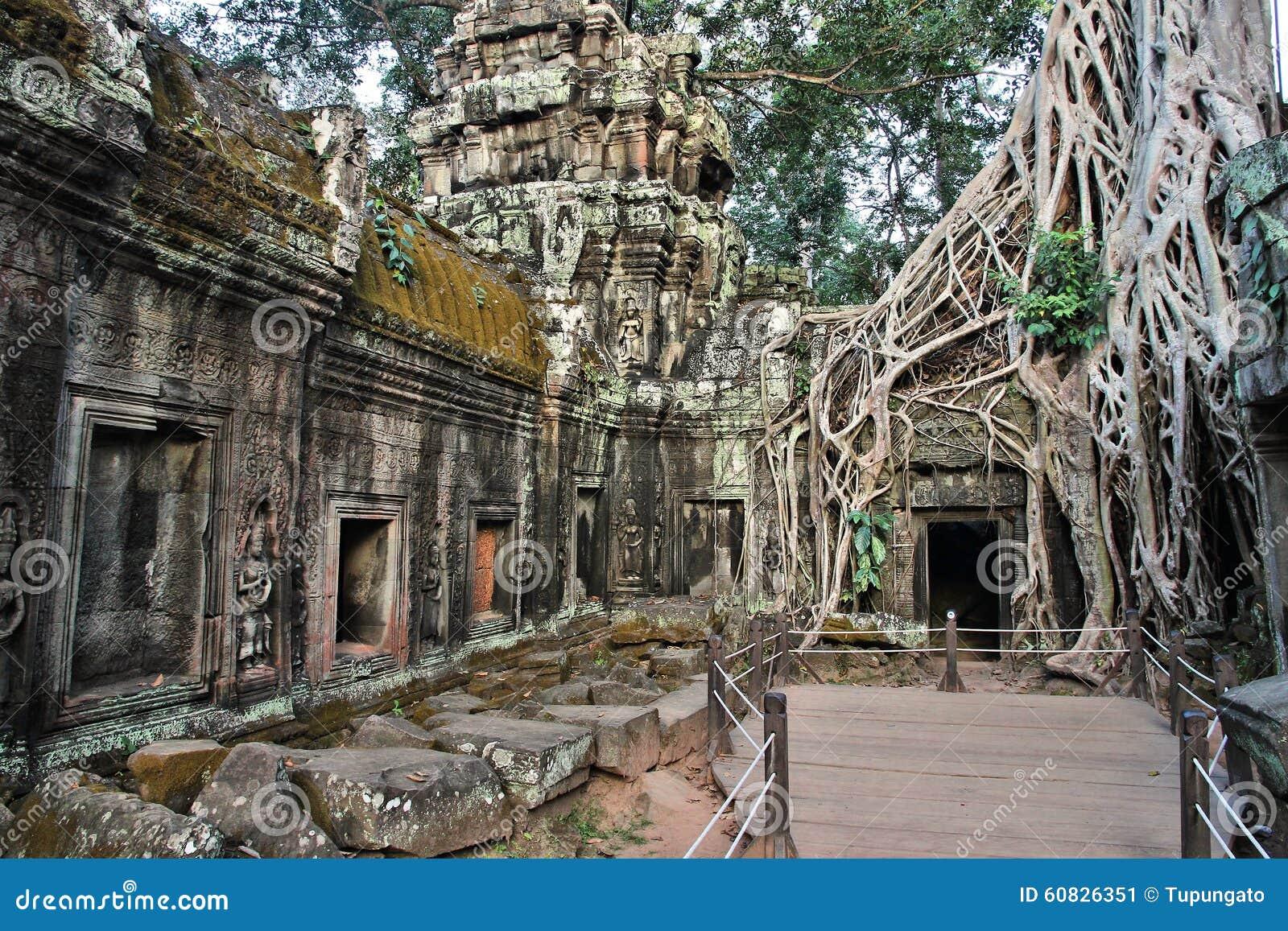 Selva de Camboya