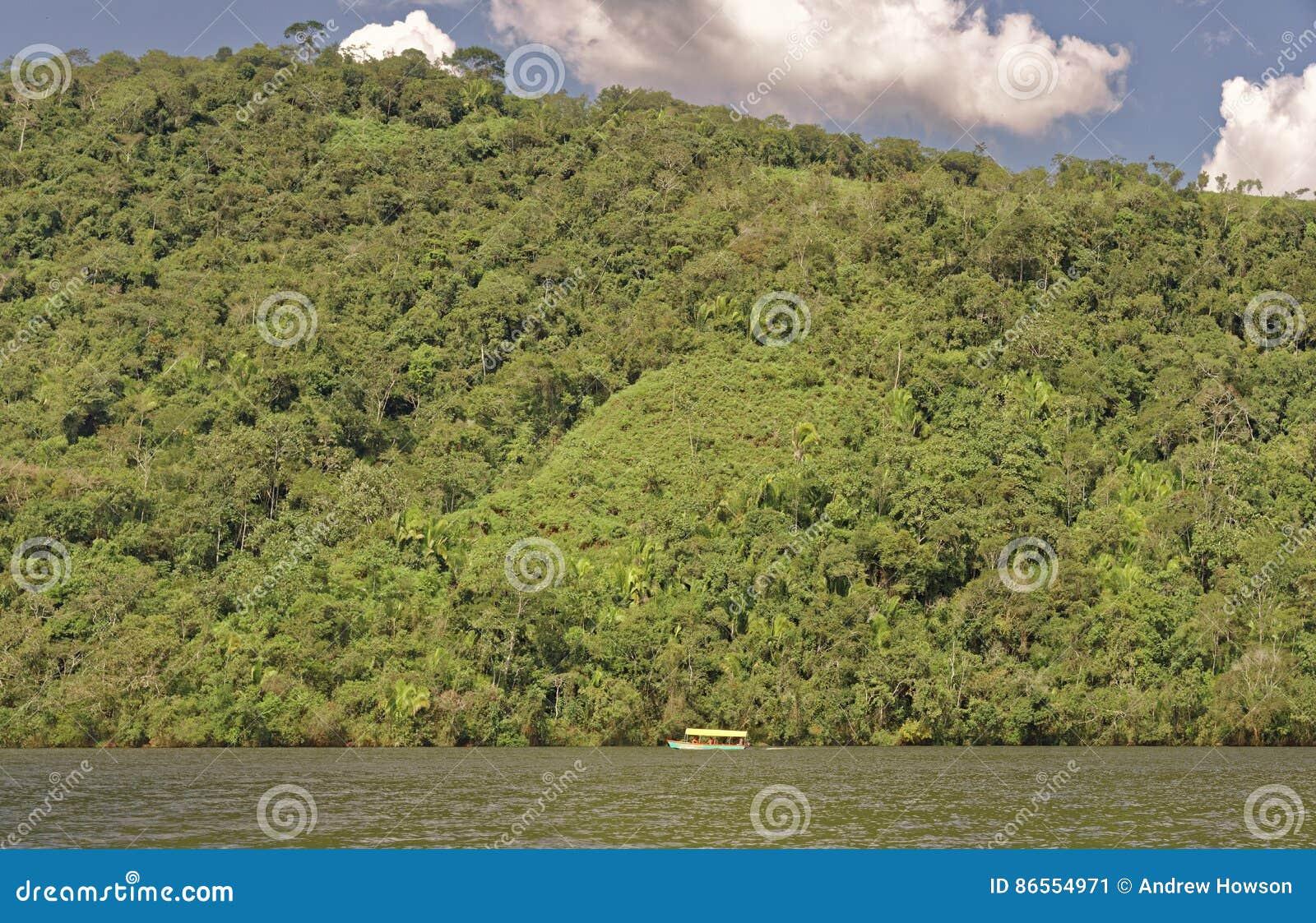 Selva peru