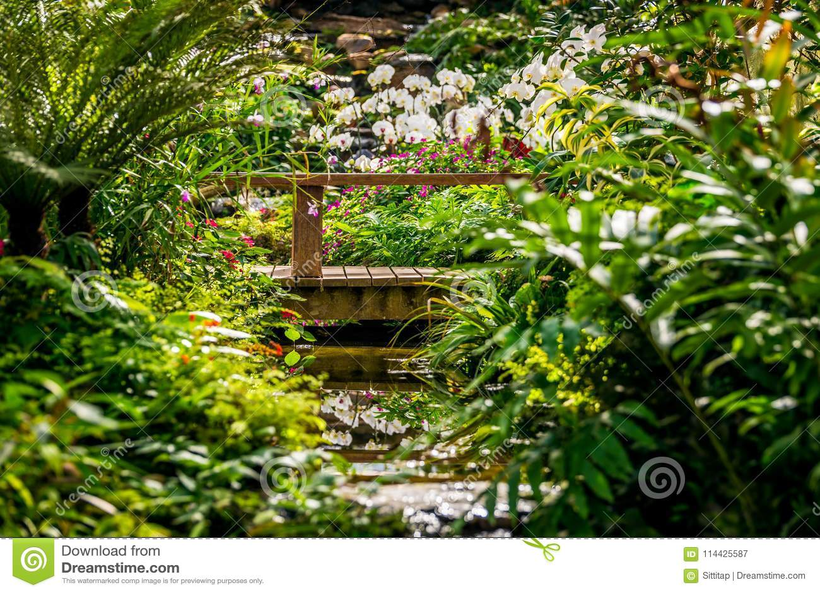 Selva tropical de imitación del jardín de la orquídea