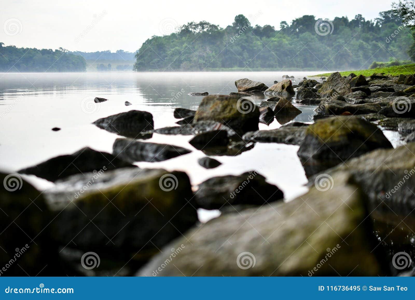 Selva tropical rocosa del agua tranquila