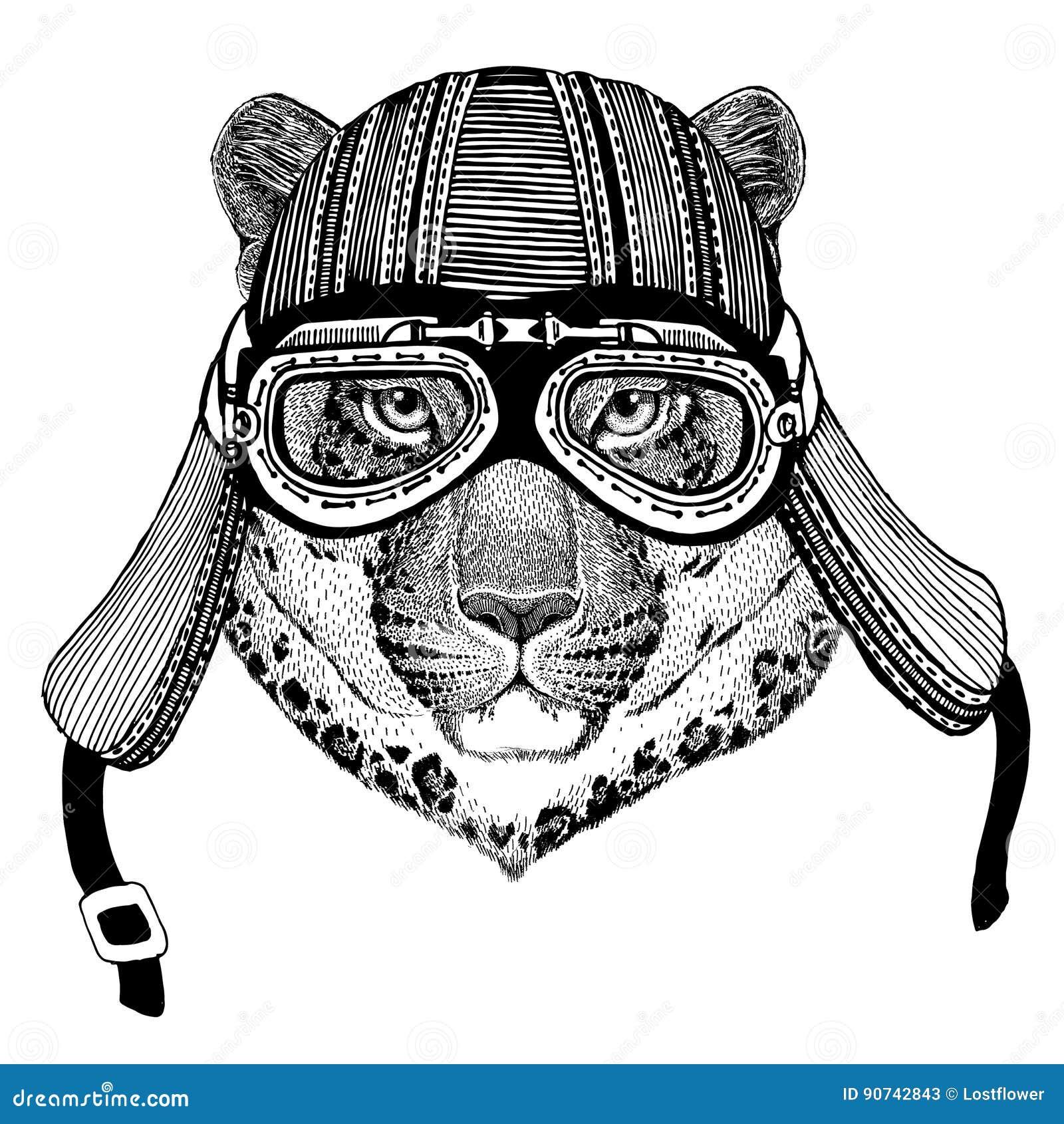 Selvaggio Del Gatto O Del Leopardo Del Gatto Immagine Disegnata A