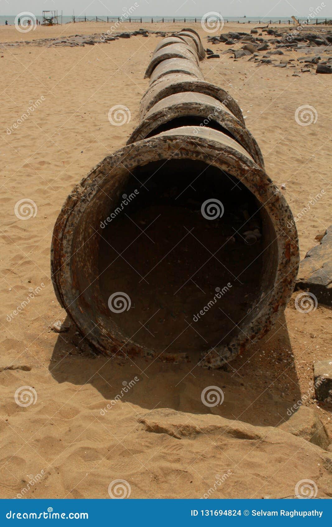 Sementes abandonadas do cimento na areia da praia