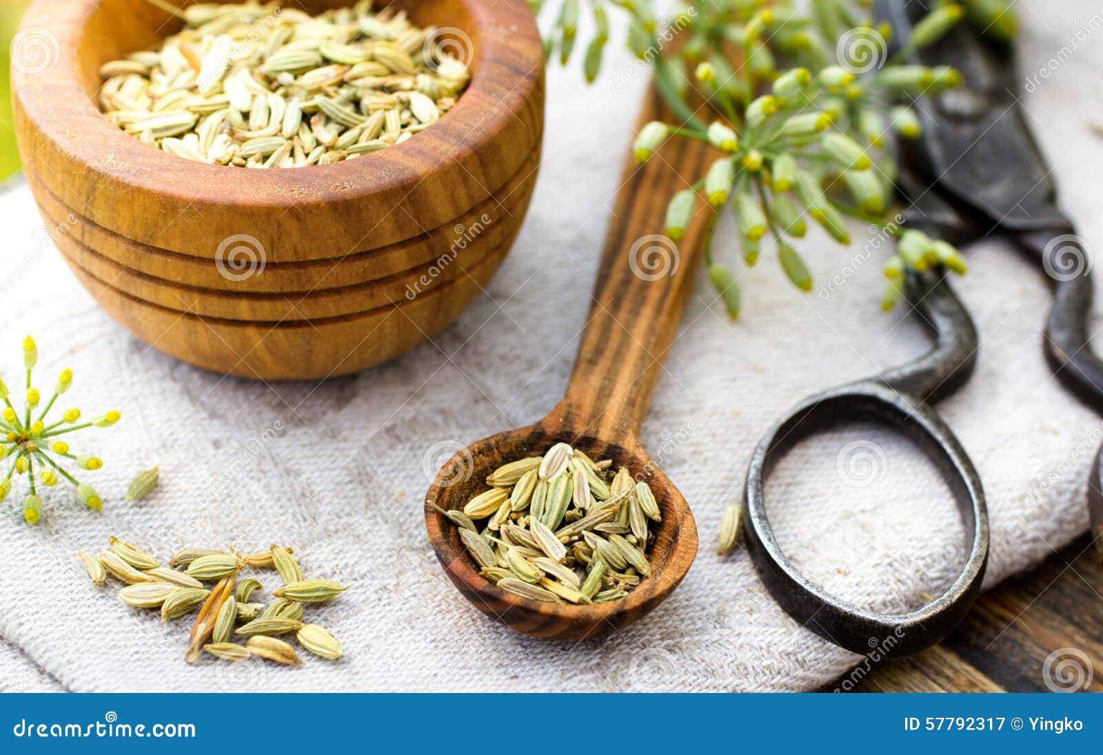 Sementes de erva-doce na colher