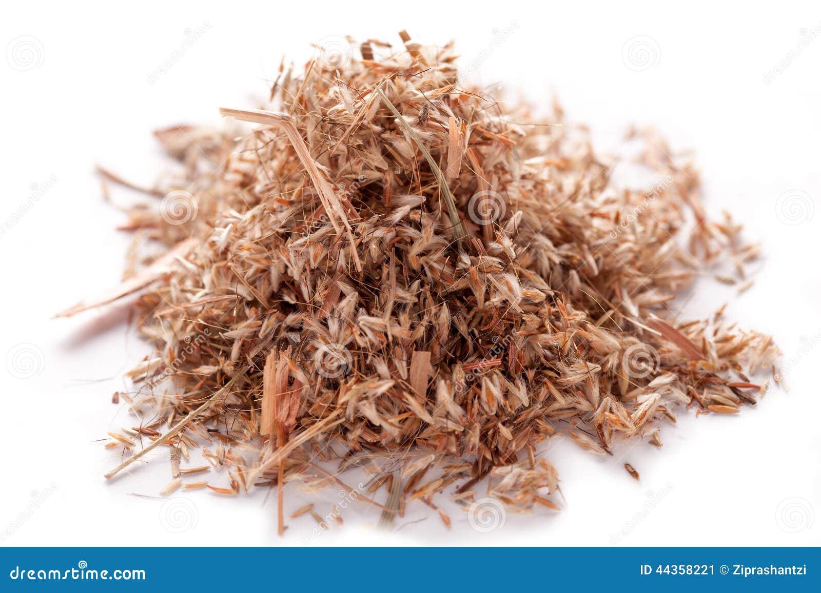 Semi dell erba della palmarosa (martinii di Cymbopogon)