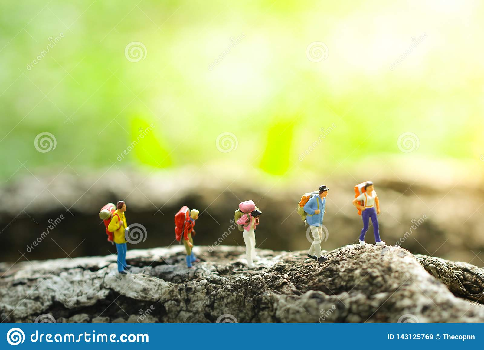 Senderismo de cinco viajeros en selva en fondo borroso verdor