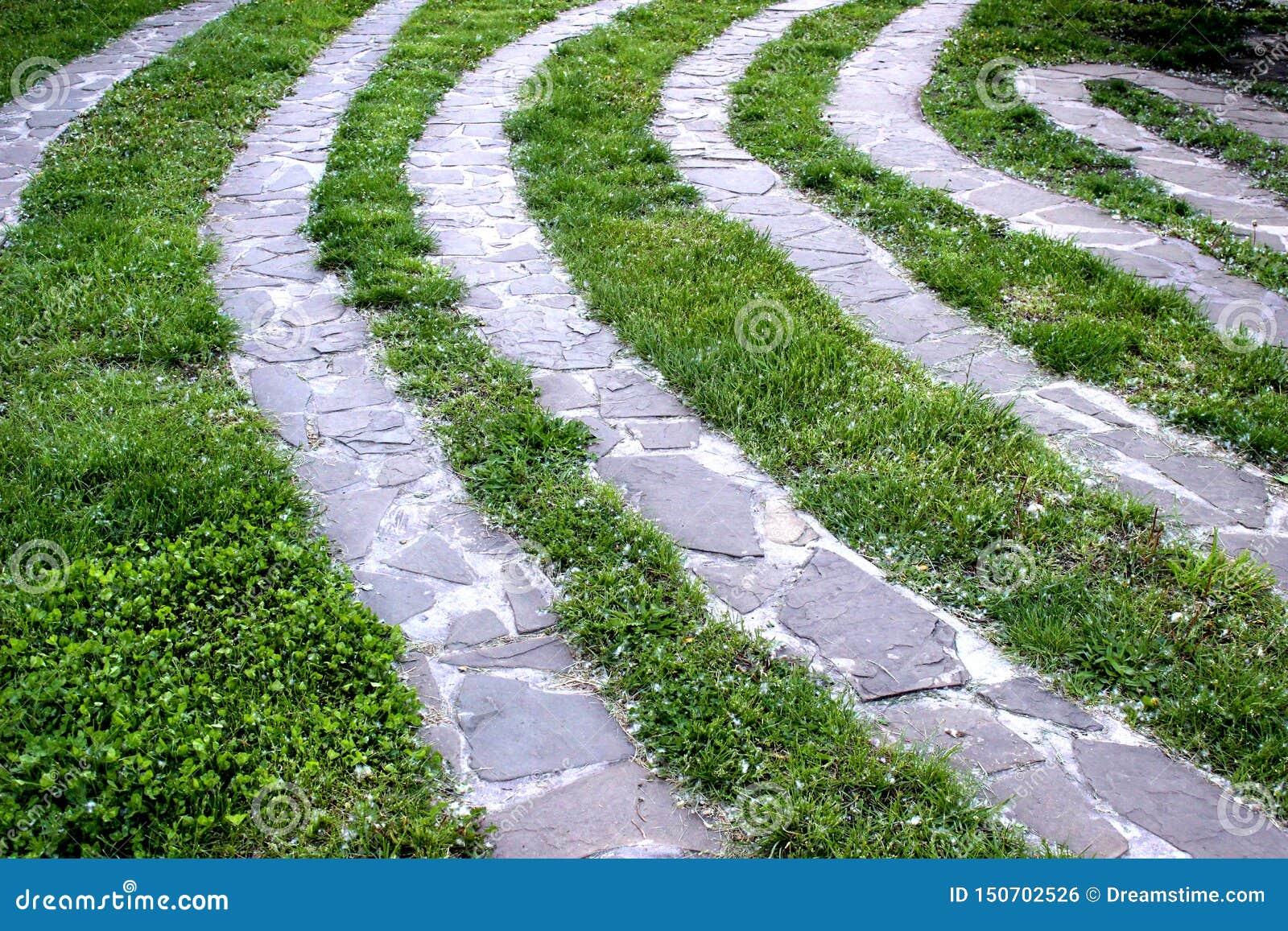 Sendero con diseño que ajardina de la hierba verde