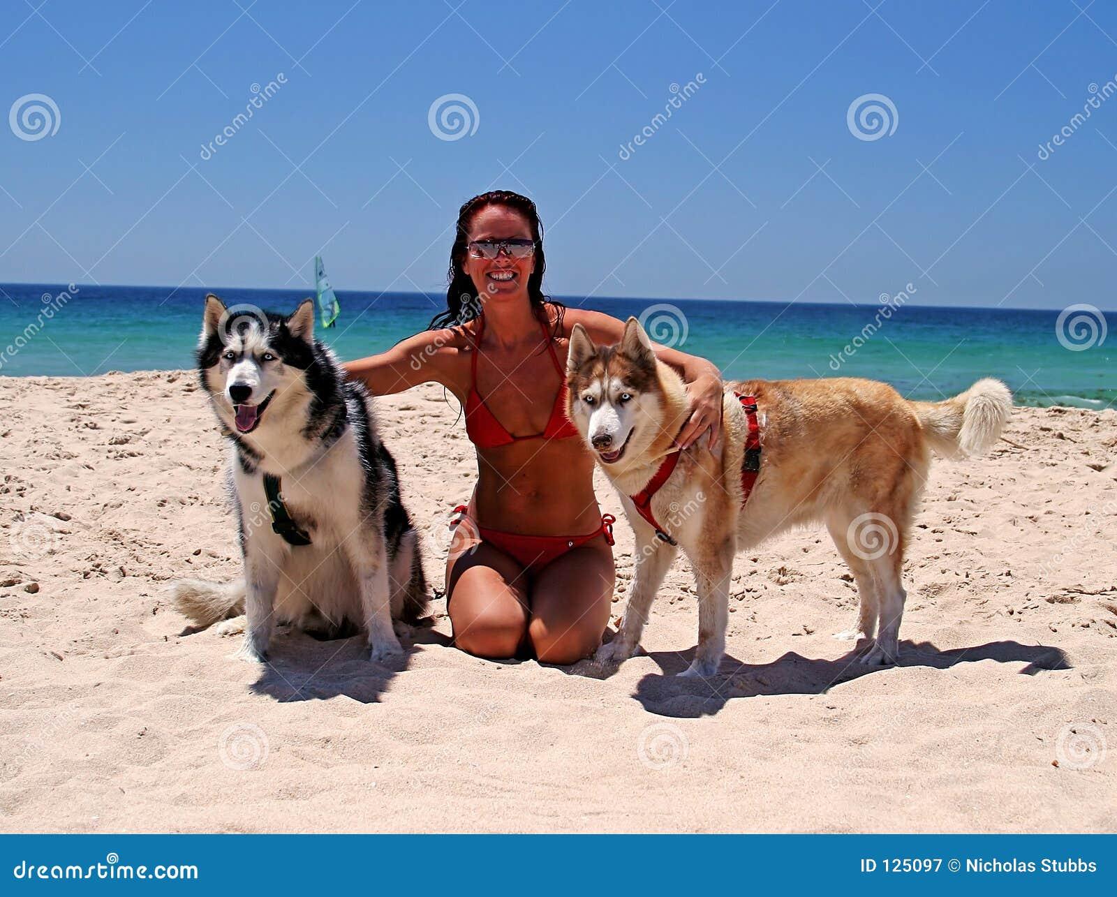 Senhora atrativa na praia ensolarada com areia branca e os céus azuis, com os dois cães eyed azuis bonitos