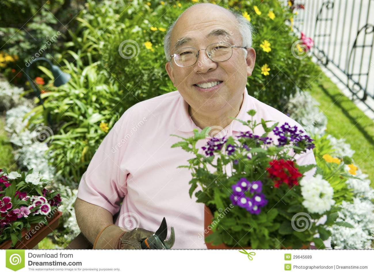Your idea Asian gardening abstract thinking