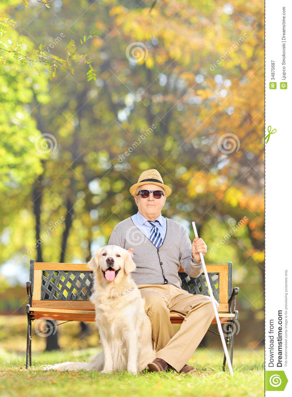 ... sitting on a wooden bench with his labrador retriever dog, in a park