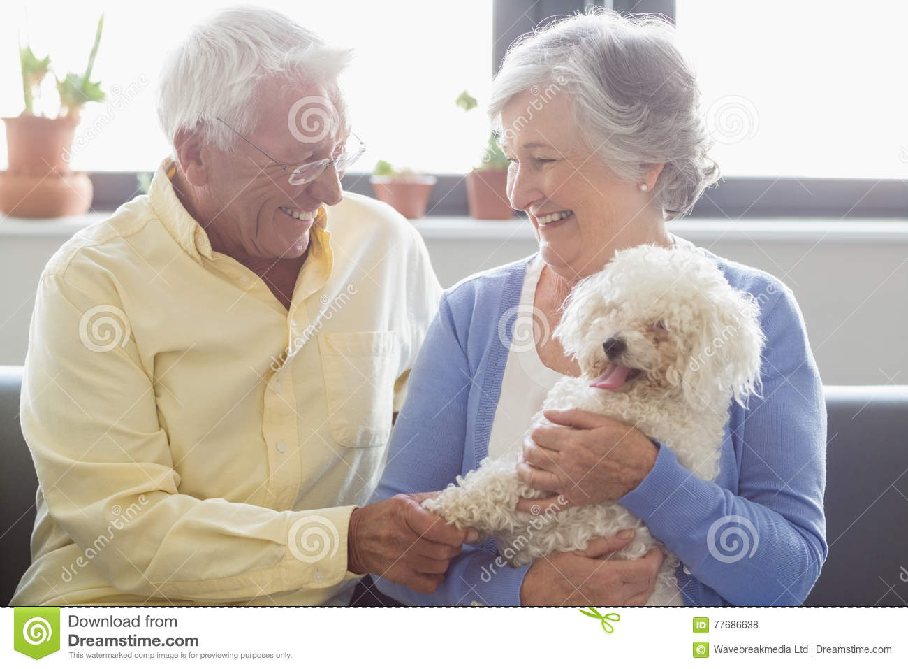 happy senior couple sitting on sofa with dog royalty free stock image 29053942. Black Bedroom Furniture Sets. Home Design Ideas