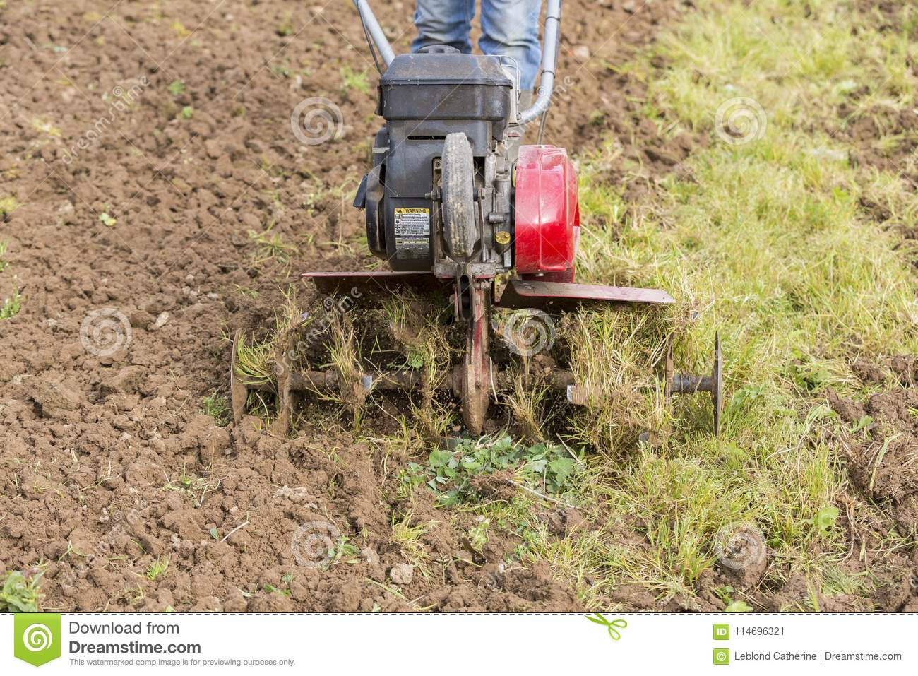 Senior Farmer Gardener Working In The Garden With Rototiller ...