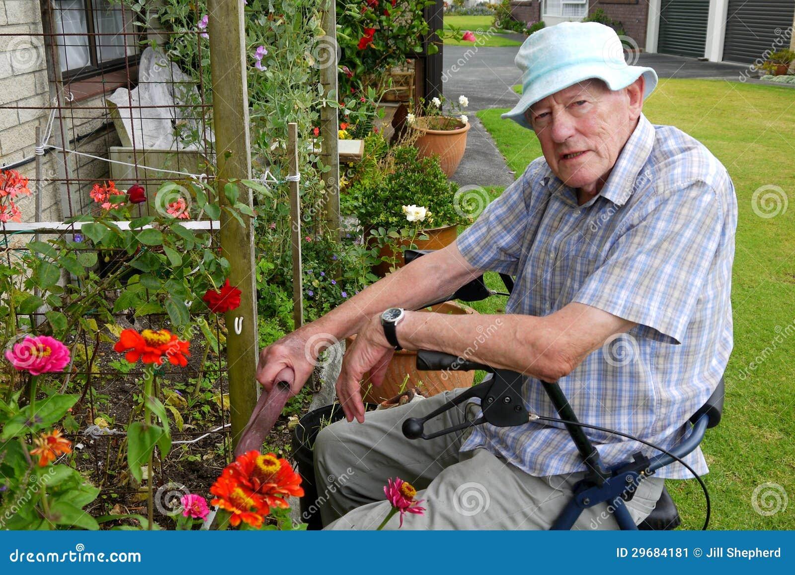 Senior Man Gardening Stock Image Image 29684181