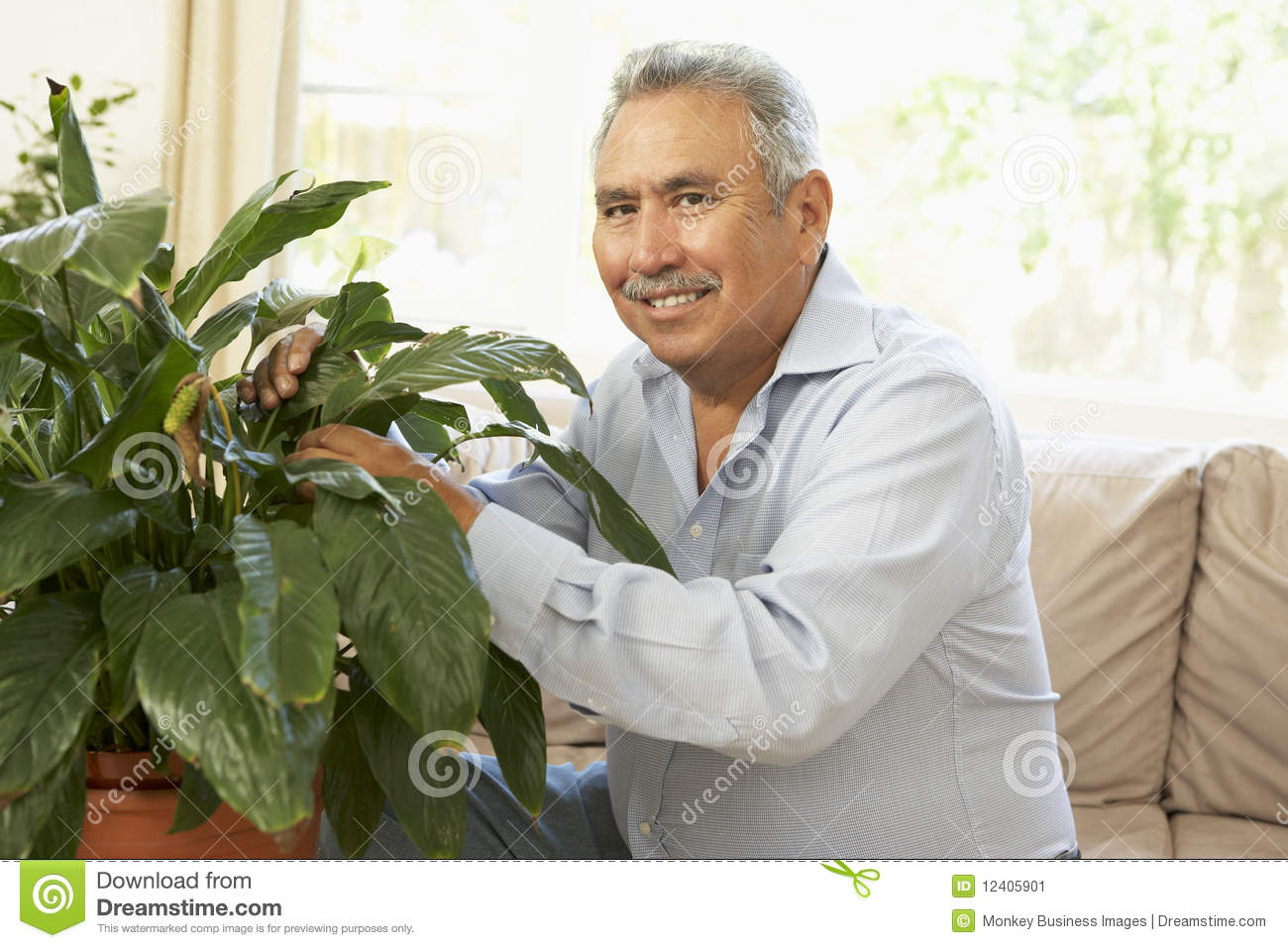 Senior Man At Home Looking After Houseplant
