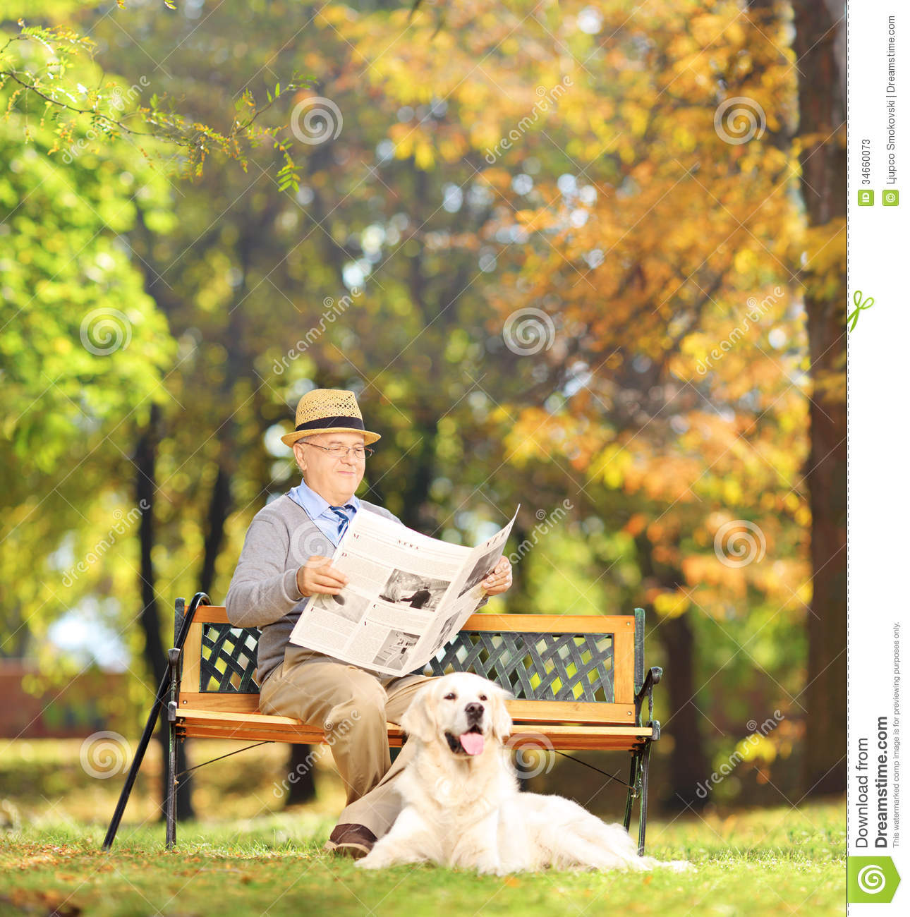 Senior Man Seated On A Bench Reading A Newspaper With His Dog, I Stock ...