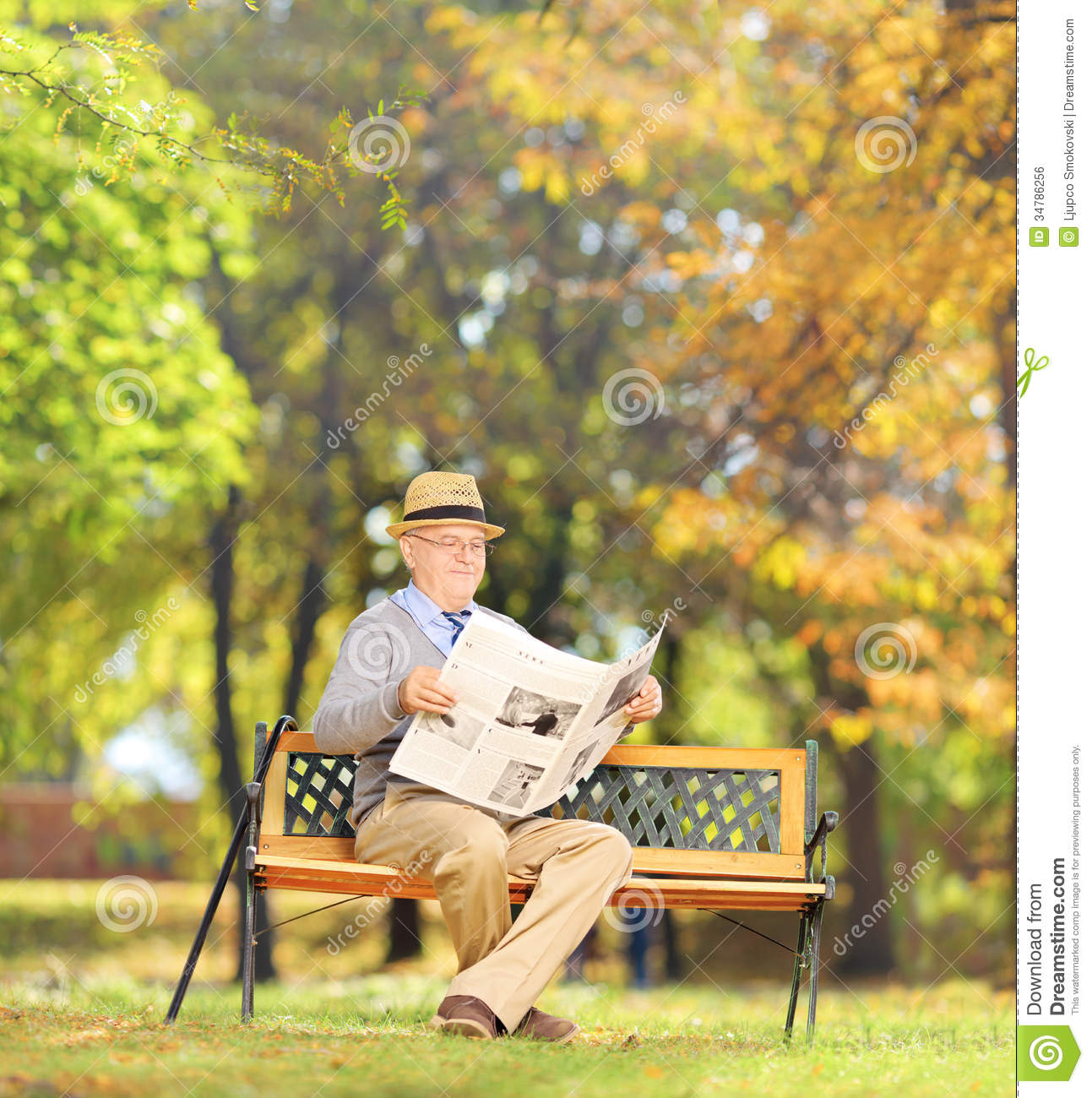 senior man seated on a bench reading a newspaper in a park stock
