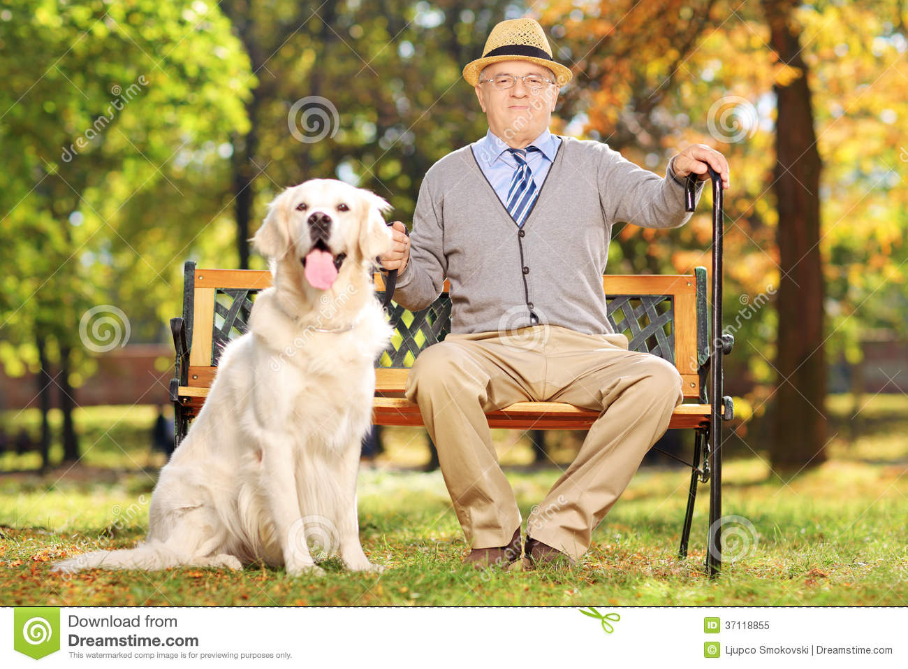 Man On Dog : Senior man sitting on a bench with his dog in park stock