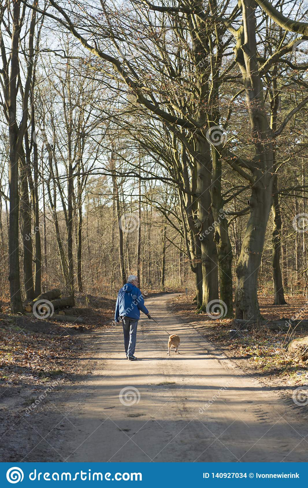 Senior man walking dog in forest