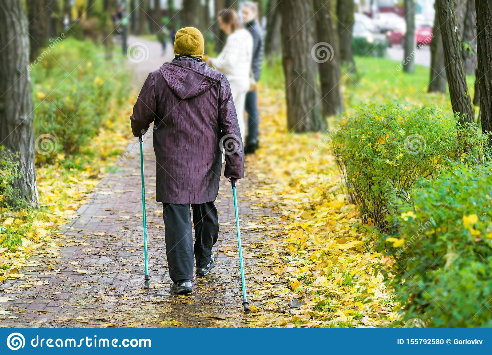 Senior woman enjoying nordic walking at beautiful colorful autumn park. Old age person doing pole walk excercise