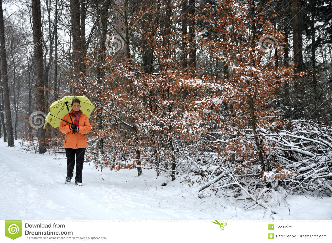 walking in the snow - photo #33