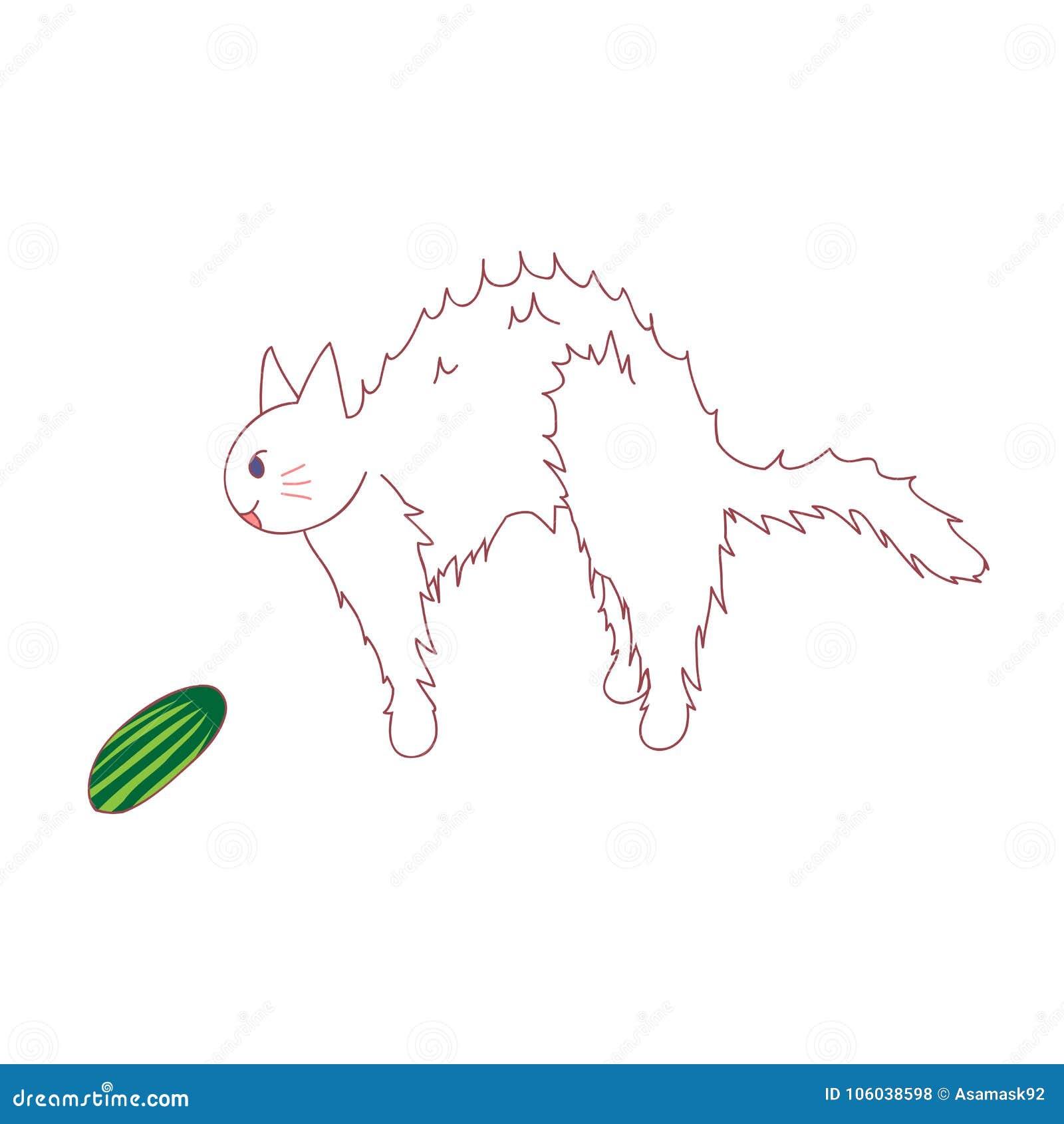 933eab6c2f2a Sensación del gato asustada de ver el pepino Ilustración del vector Aislado  en el fondo blanco