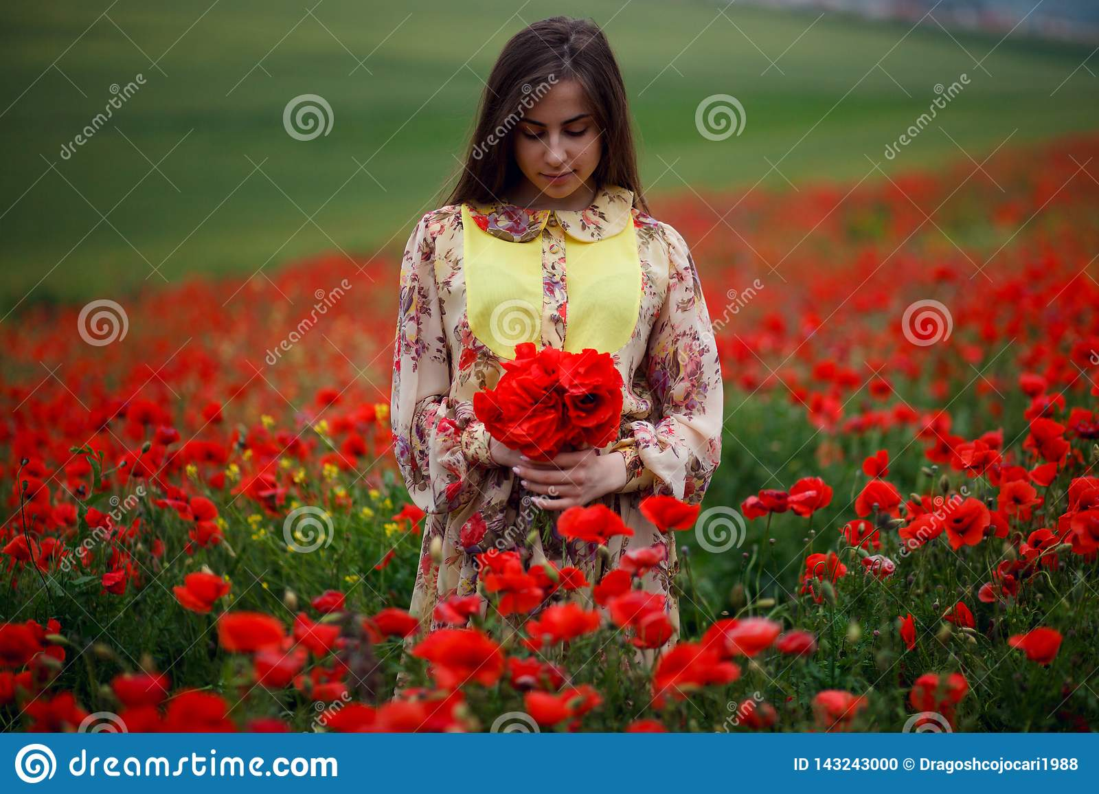 Handsome girl wearing in summer floral dress, seated in poppies field, holdings a bouquet of flowers, looks down