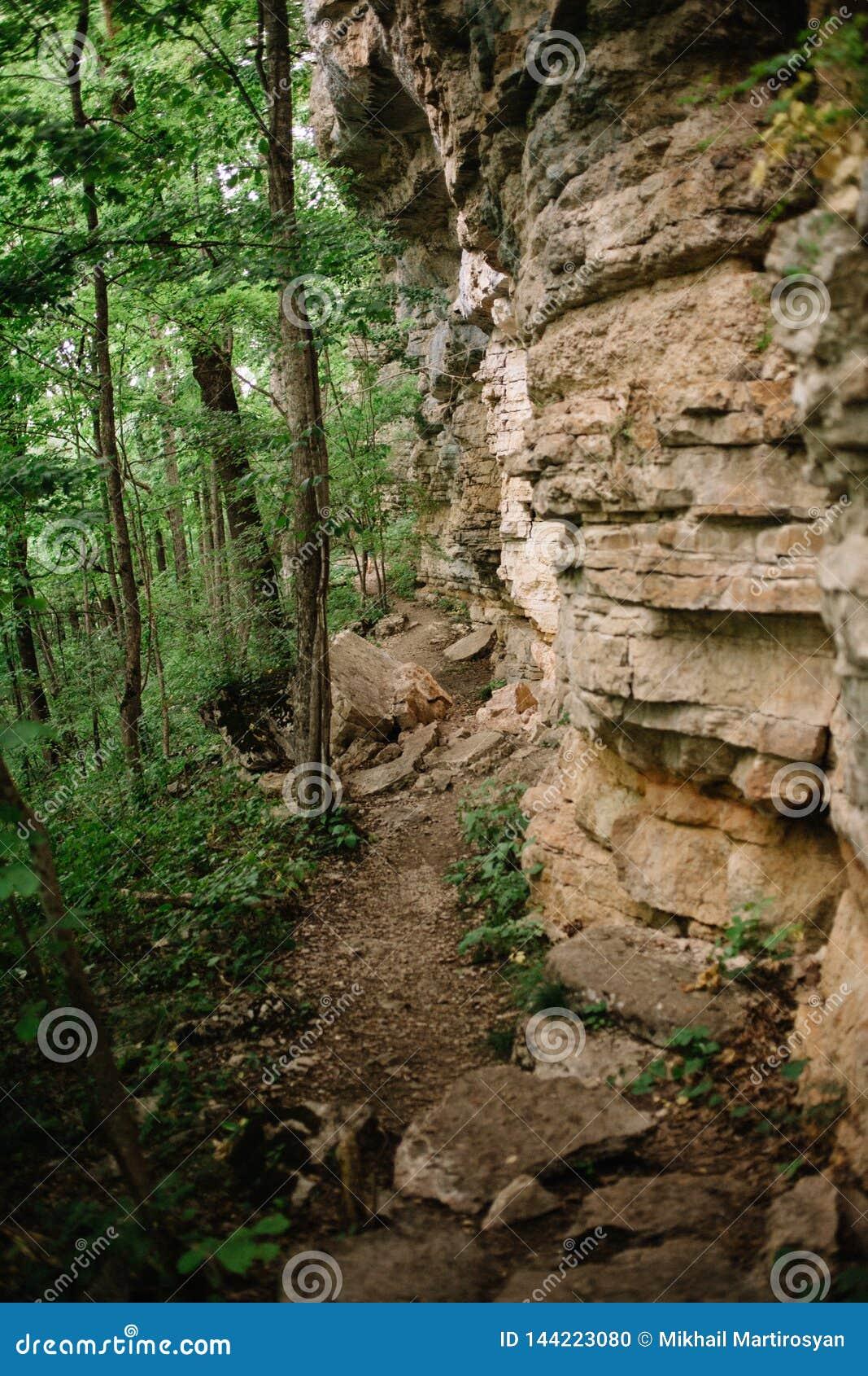 Sentier de randonnée sous une falaise tendante le cou dans la forêt