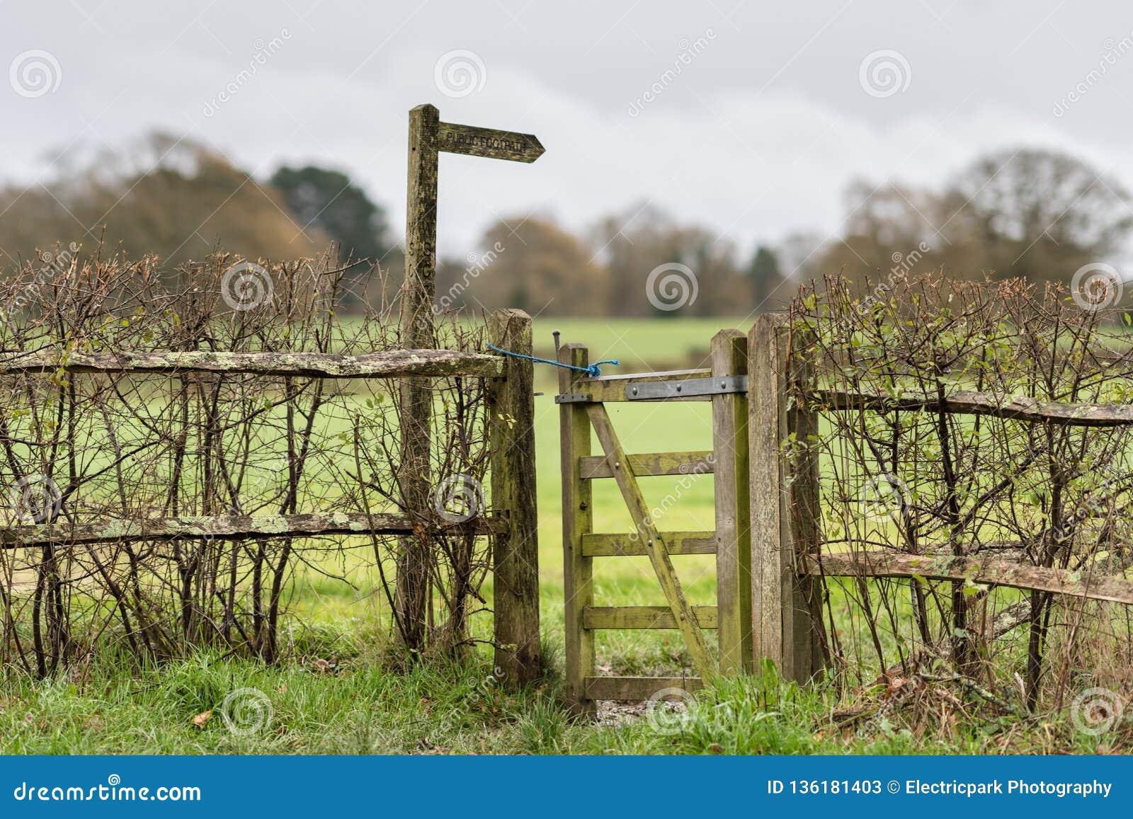 Sentier piéton de novembre, le mi Sussex, R-U