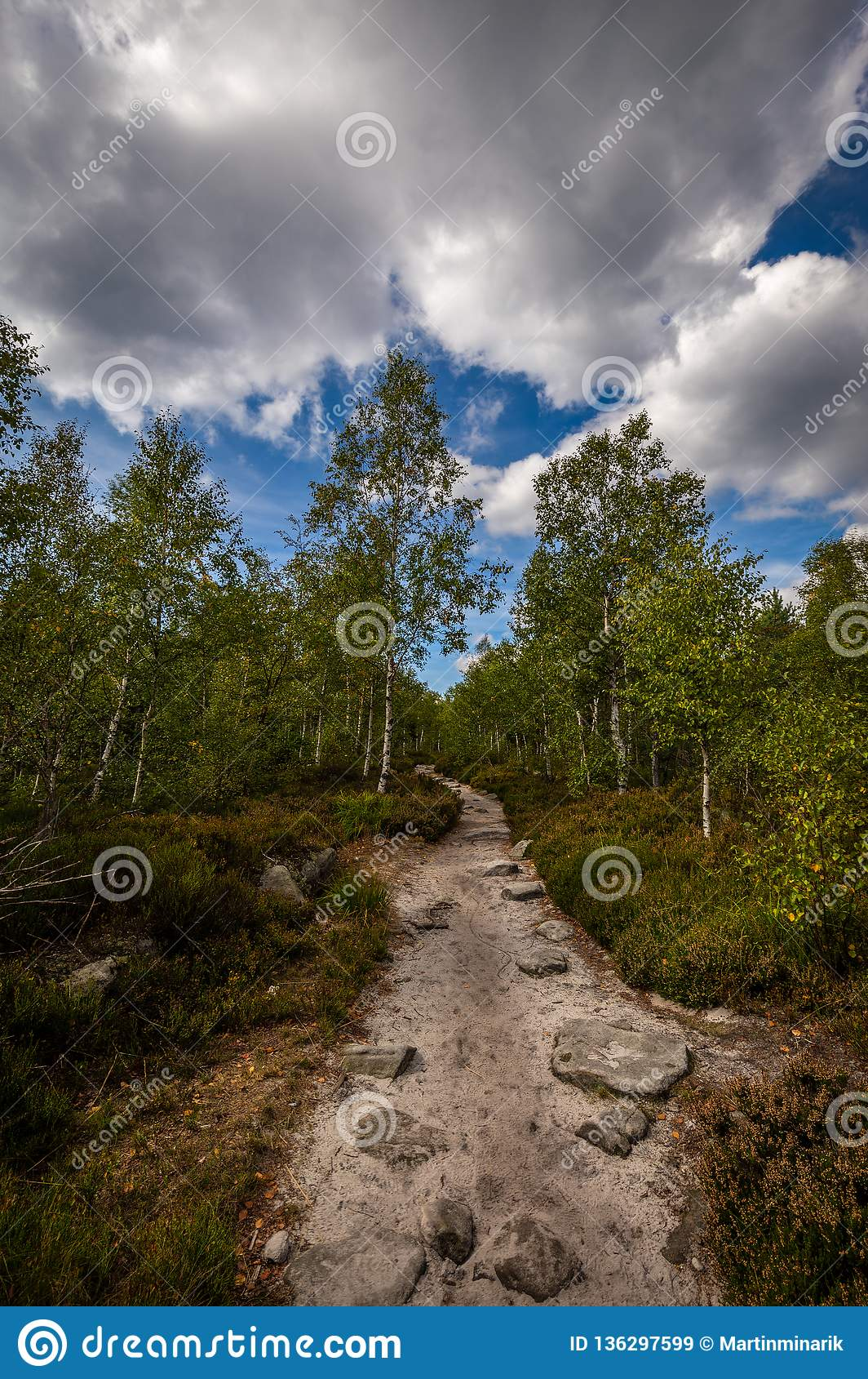 Sentier piéton de Sandy, dans la forêt verte avec le ciel nuageux bleu dramatique, au labyrinthe en pierre Bledne skaly