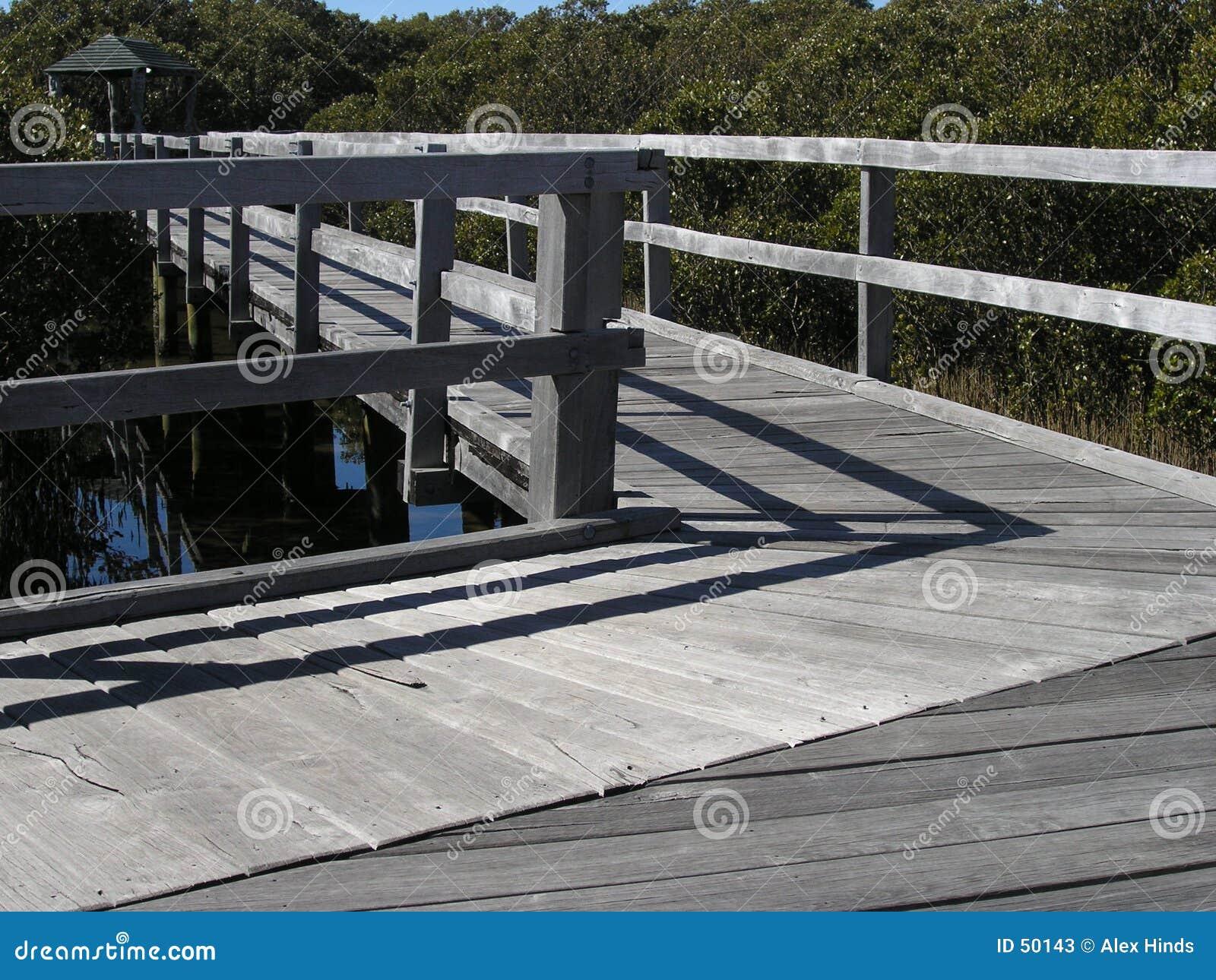 Sentiero costiero della mangrovia