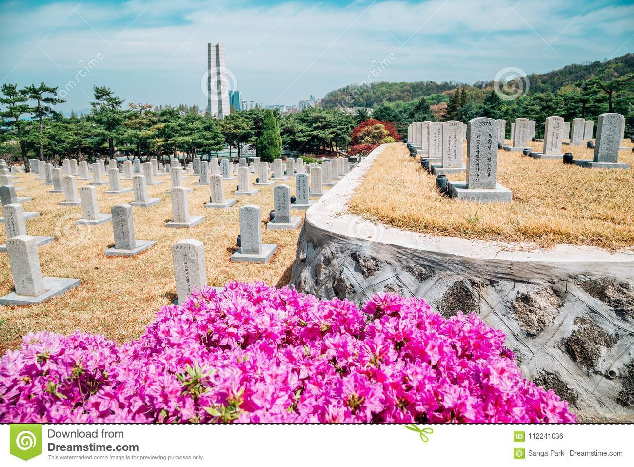 Tombstones at spring in Seoul National Cemetery, Korea