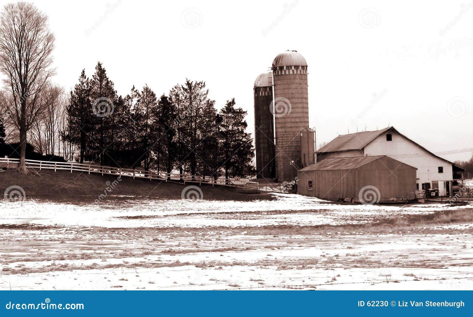 Sepia Landbouwbedrijf