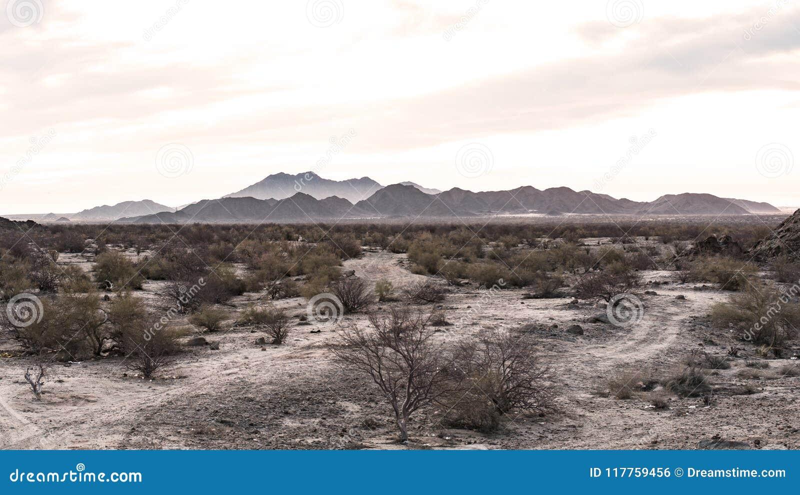 Sepiowy pustynia krajobraz z górami w tle