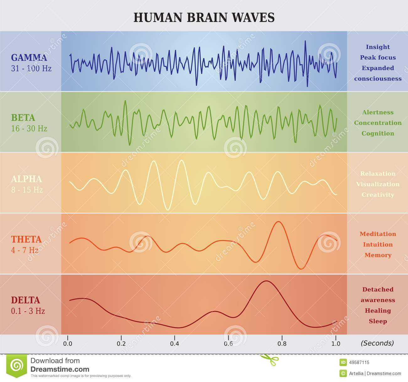 Ser humano brain waves diagramcartailustrao ilustrao do vetor download ser humano brain waves diagramcartailustrao ilustrao do vetor ilustrao de ccuart Images