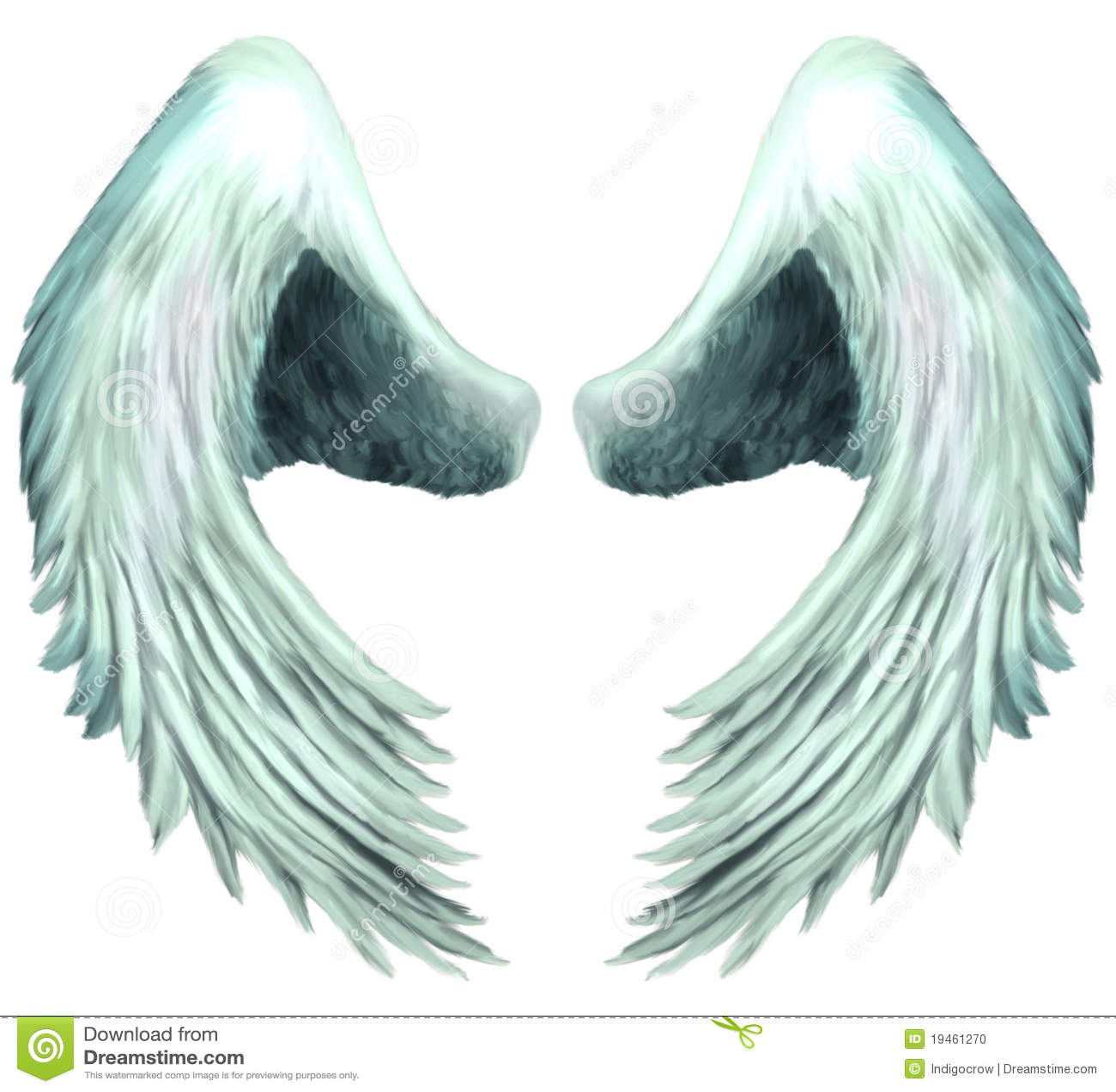 seraphim angel wings 1 stock illustration illustration of
