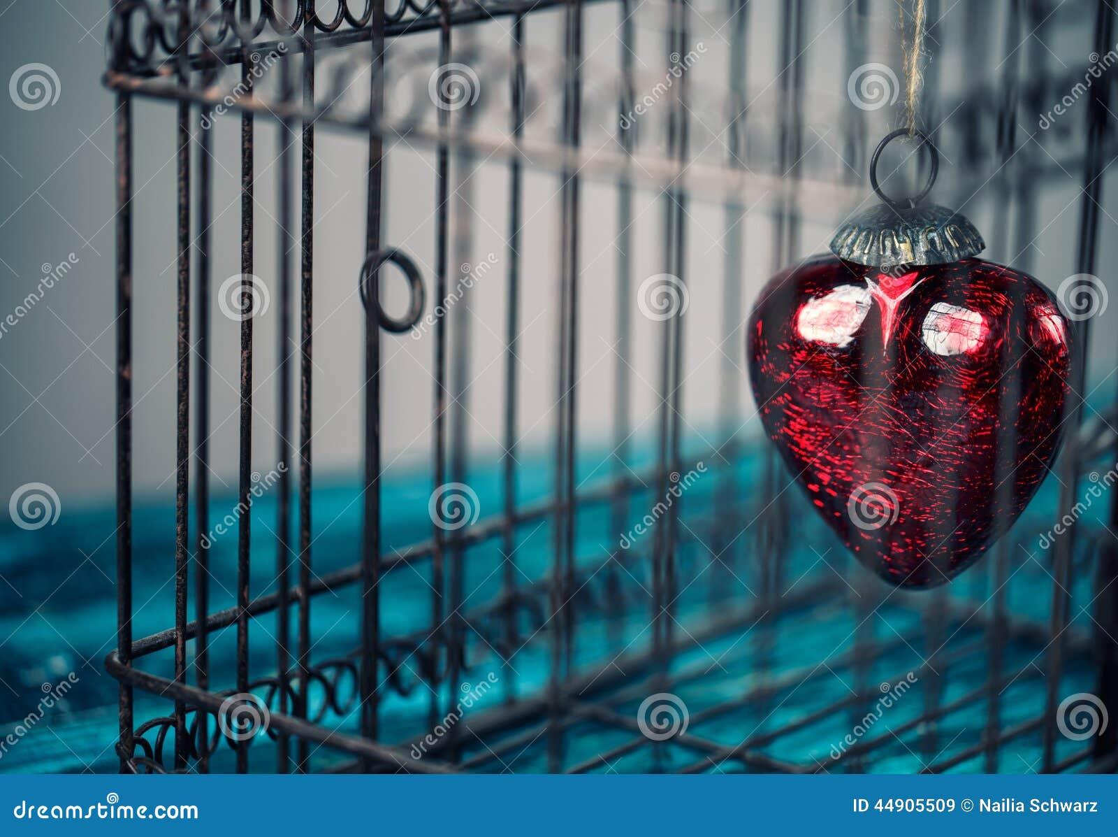 Serce w klatce
