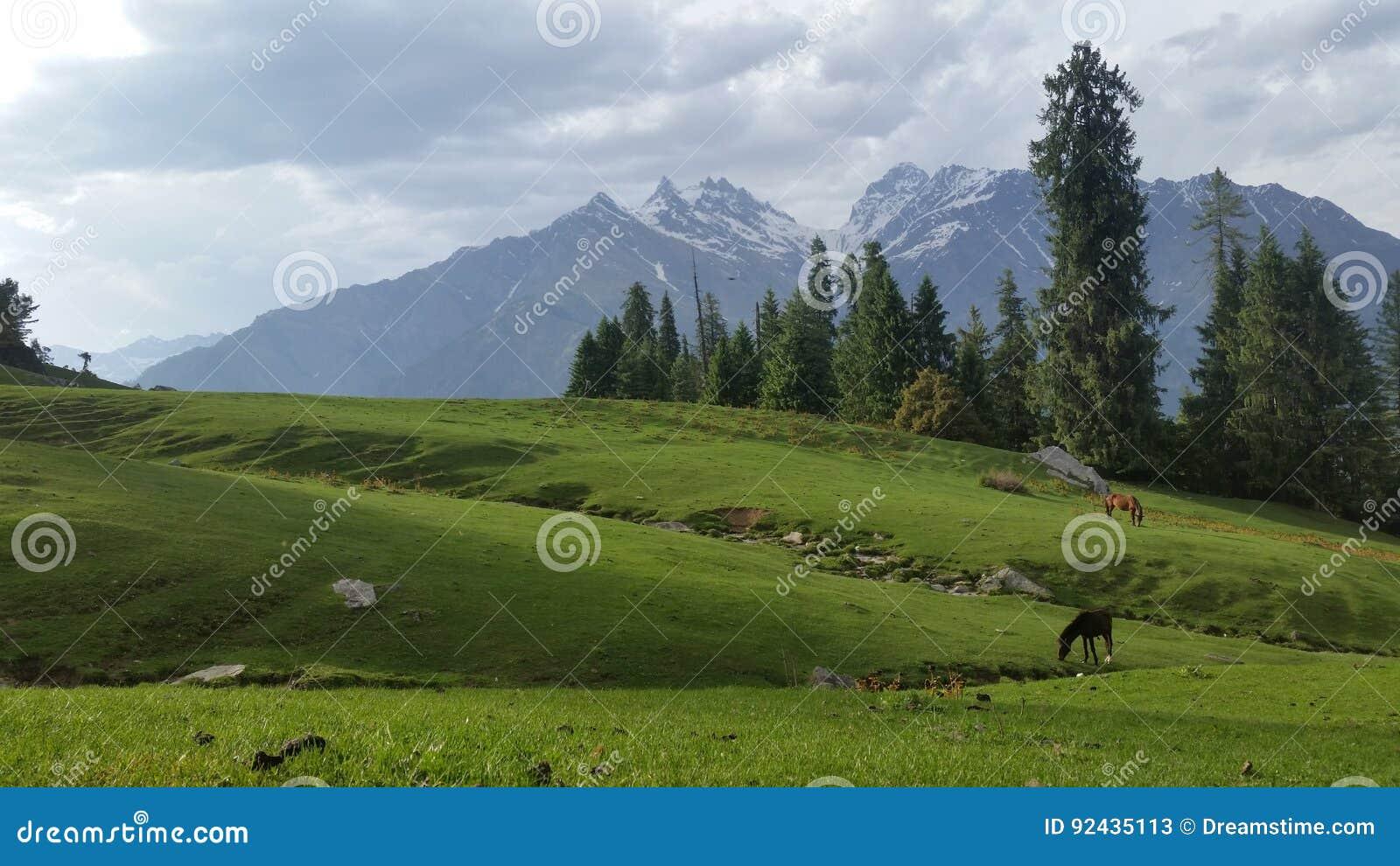 Serene Himalayas