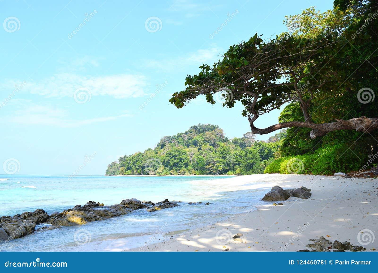 Serene Landscape mit steiniger Strand-, Baum-, Himmel-und wasser- Neils Bucht, Radhanagar-Strand, Havelock-Insel, Andaman Nicobar