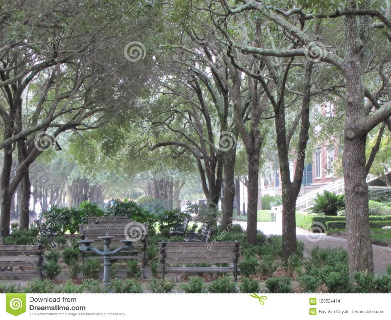 Stupendous A Serene Park For Relaxing Stock Photo Image Of Benches Squirreltailoven Fun Painted Chair Ideas Images Squirreltailovenorg