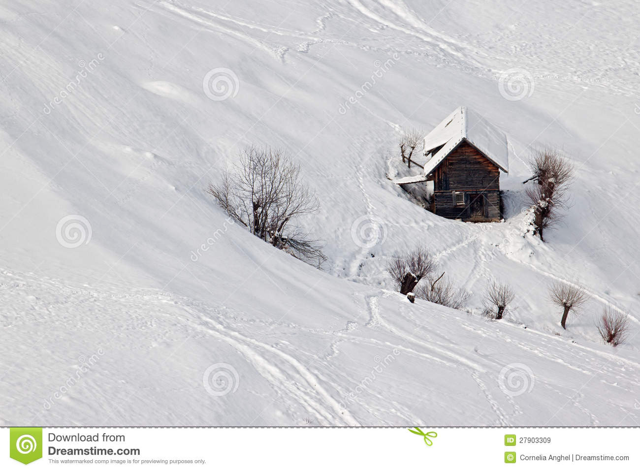 Serene Winter Landscape Small Cottage