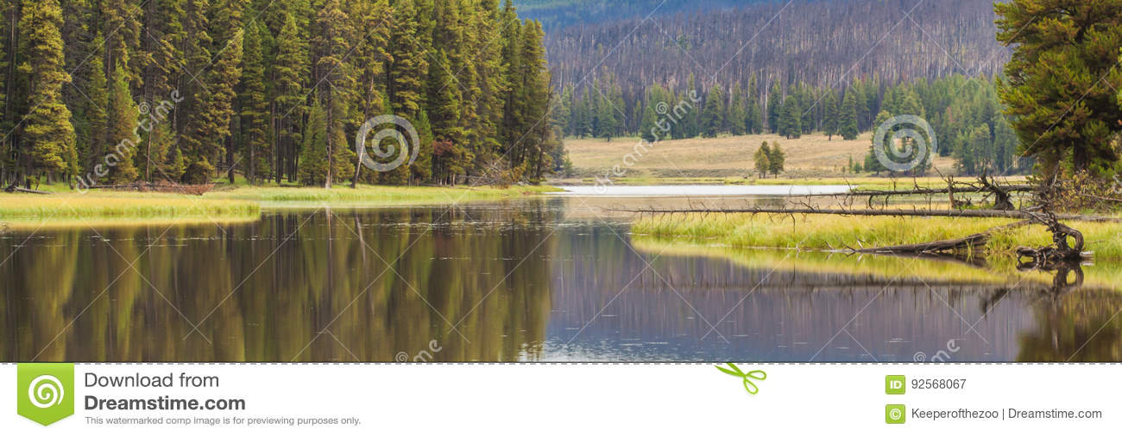 Serene Yellowstone River Landscape