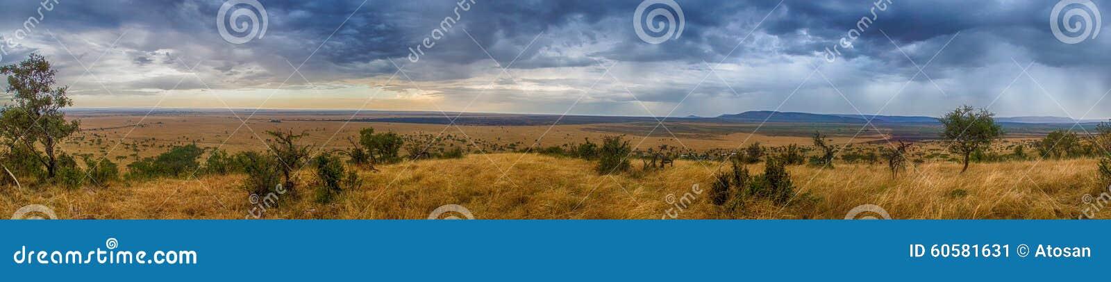 Serengeti-Panorama