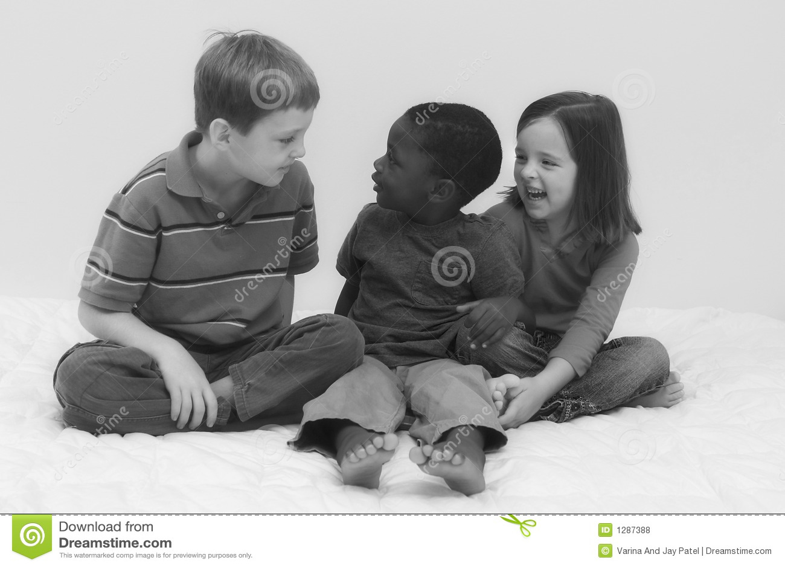 Serie de la diversidad