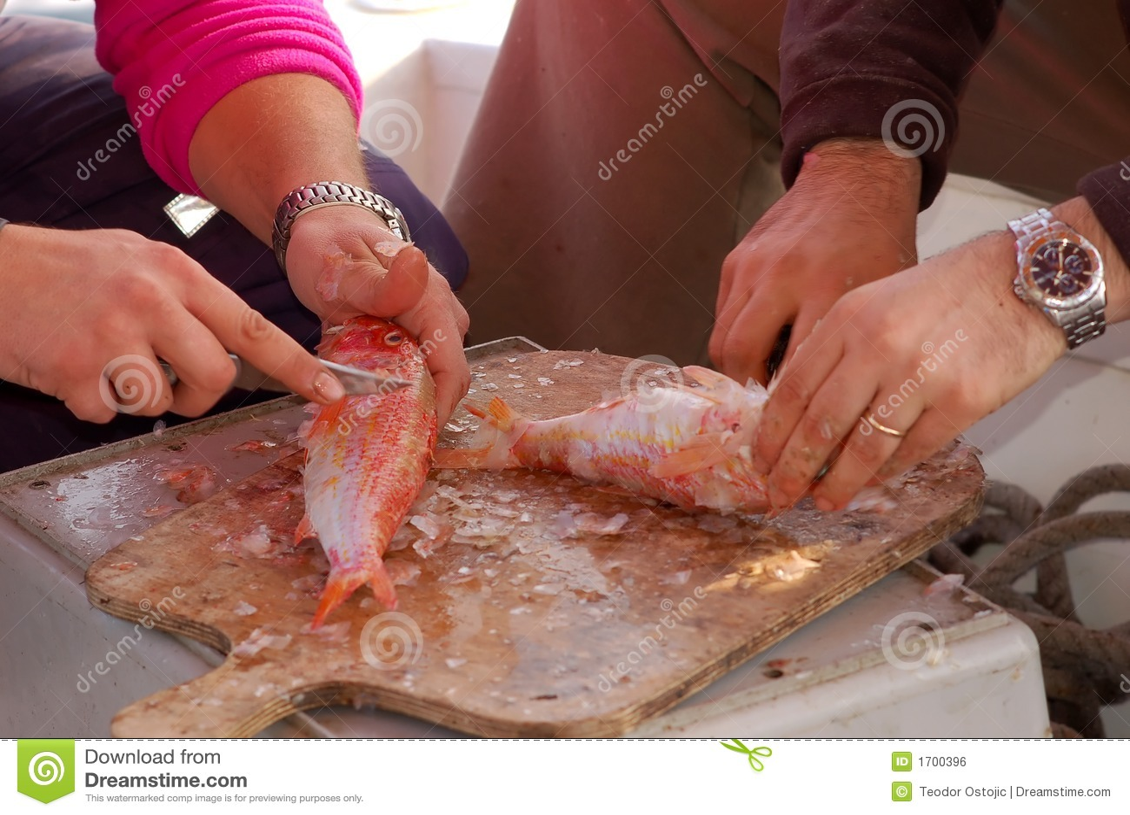 Serie de la pesca - limpieza de un pescado fresco